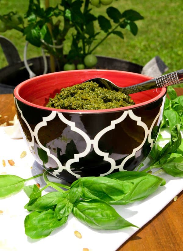 Poor Man's Pesto Sauce with basil in bowl